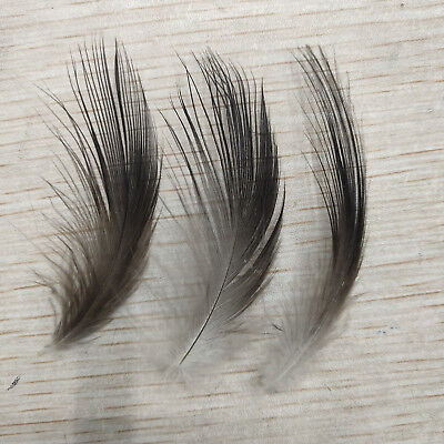 Wholesale 10-100pcs Black Heron Silk Feathers 2-8 inches//5-20 cm For Decoration