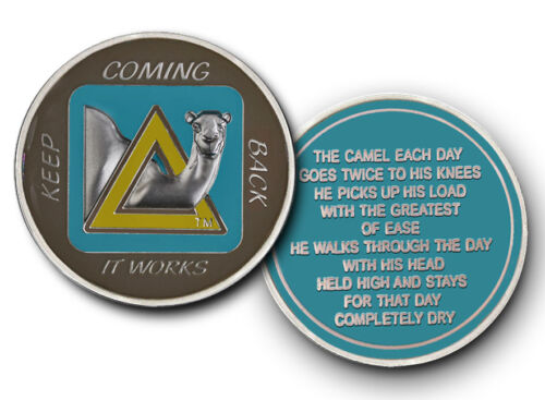 Keep Coming Back Sober Camel  AA Recovery Coin// Medallion//TOKEN//Teal//Brn//Yellow