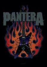PANTERA - Guitar Dimebag - Flagge Posterfahne Textilposter Flag - Neu #920943