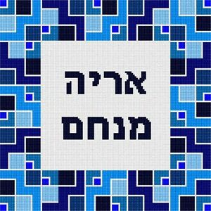 Details About Tefillin Cubicles Needlepoint Kit Or Canvas Jewish Judaica Bag