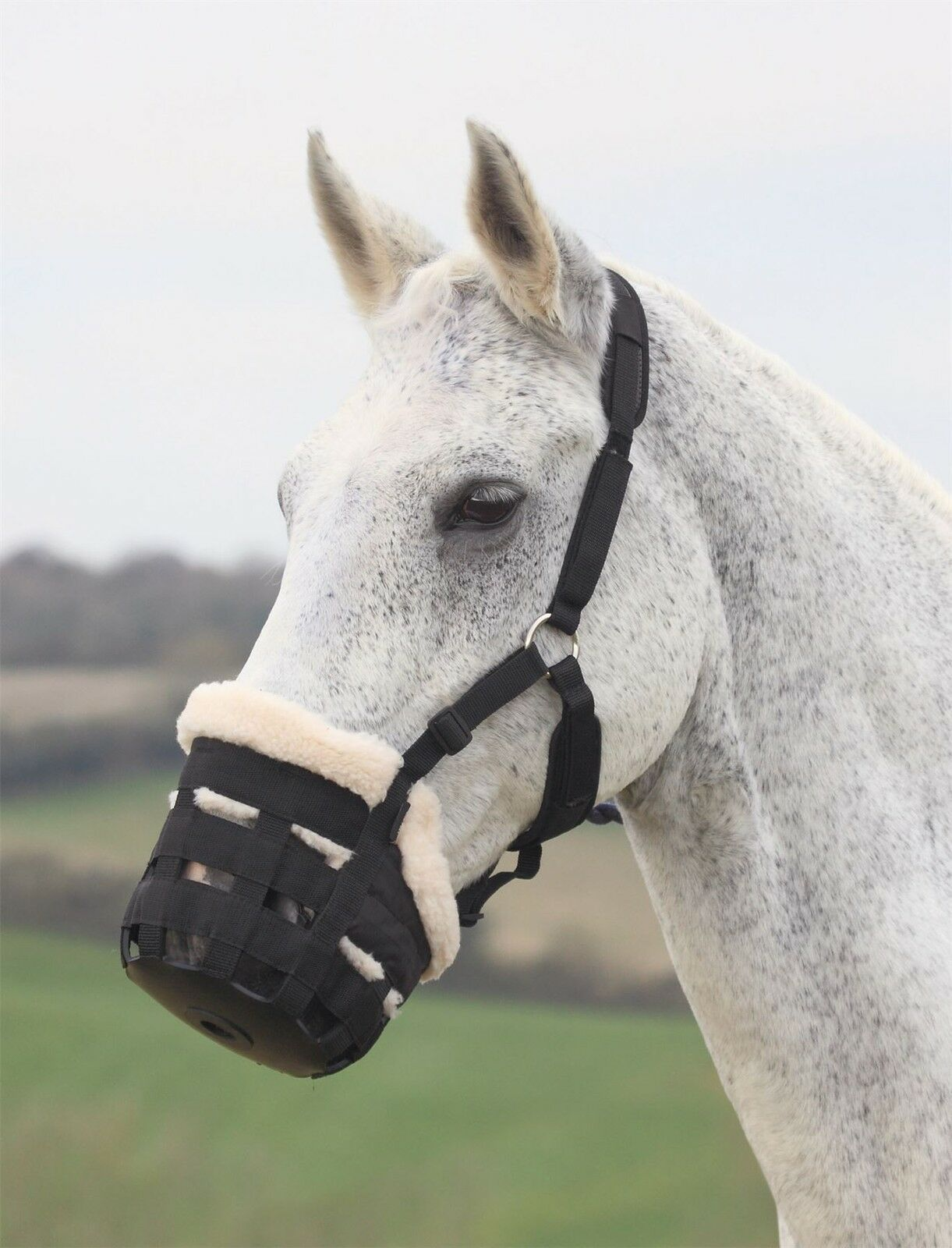 DELUXE  COMFORT GRAZING MUZZLE HORSE EQUESTRIAN REDUCE FEEDING GRAZING  sale online discount low price