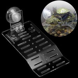 ... Pier-Dock-Basking-Platform-Acrylic-Shelf-Ramp-Aquarium-Fish-Tank-Decor