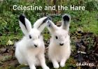 Celestine and The Hare 2017 Calendar by Karin Hines