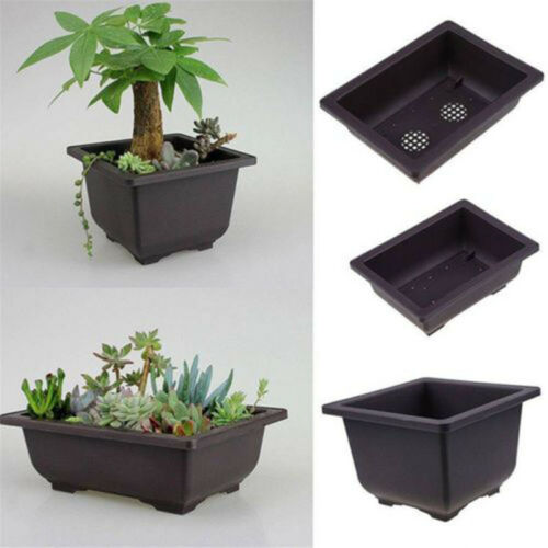 New Plastic Flower Pot Balcony Square Basin Bonsai Plant Bowl Nursery Planter ^