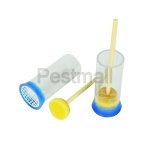 2 pcs Queen Marking Cage with Plunger Beekeeping Bee Keeping Tool ( US Seller)