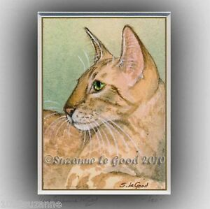 ACEO-LTD-EDITION-ORIENTAL-CHOCOLATE-TABBY-CAT-PAINTING-PRINT-BY-SUZANNE-LE-GOOD