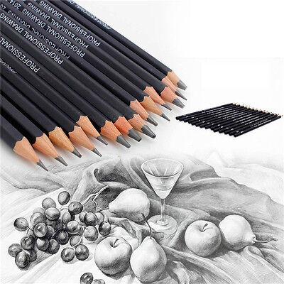 20Stk Set Willow Kohle Bar Bleistift Sketch Zeichnung Künstler schwarz Gut wr