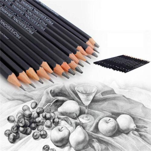 Set von 14 Sketch Art Zeichnung Bleistift Sketching Ölbasis Künstler Skizze  JPZ