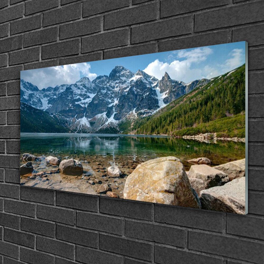 Tableau sur verre Image Impression 100x50 Paysage Forêt Montagnes