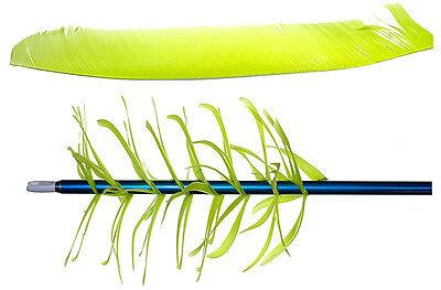 Trueflight Feathers pleine longueur Spiral Wrap grippe-Ulf aile droite Rose Pack de 100