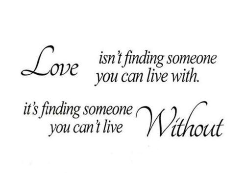 Love Finding Someone Bedroom Living Room Wall Quote Art Vinyl Decal Sticker V196