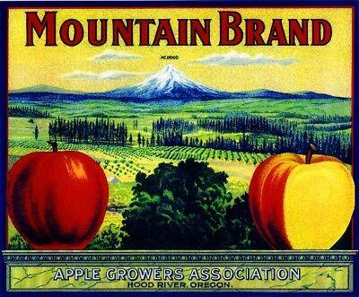 Apple Fruit Crate Label Art Print Hood River Oregon Mt