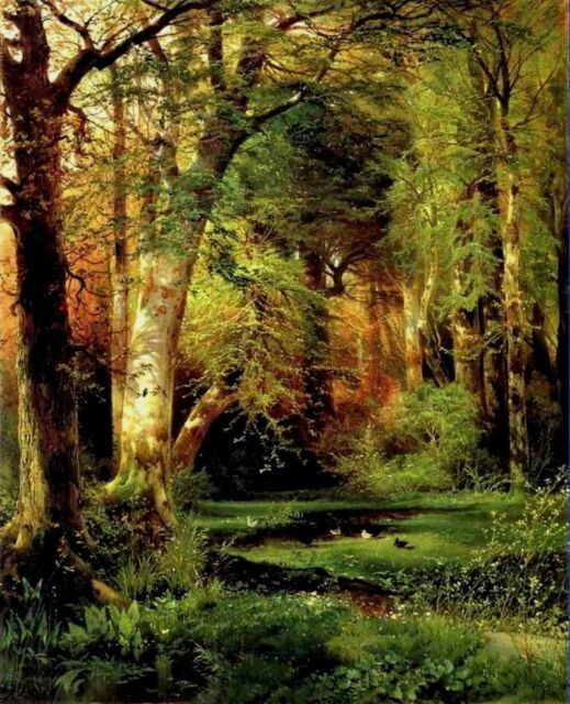 "Art Canvas Print Forest Sunshine Oil painting Printed on canvas 16""x20"" P139"