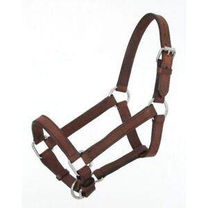 Royal-King-braunes-Leder-Mini-Pony-Groesse-Neckholder-Pferd-Tack-Equine-44-701