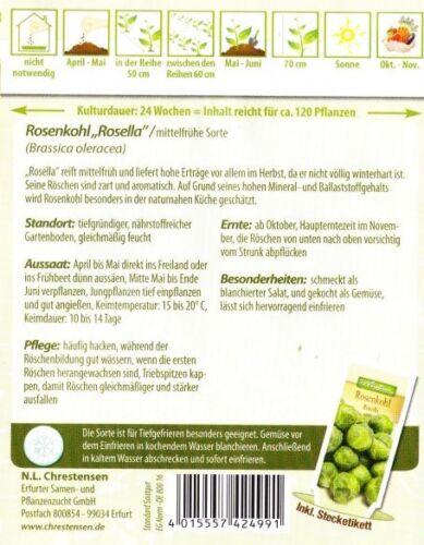 Cavoletti di Bruxelles /'Rosella/' Kohl circa 120 semi 4039 Brassica oleracea