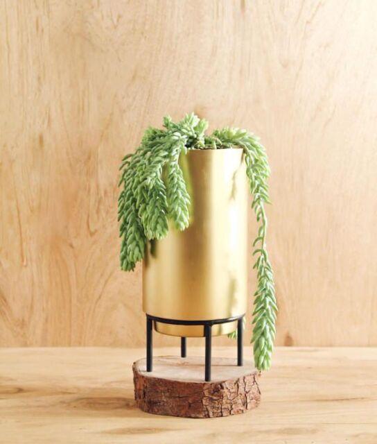 ORIEL BRASS PLANTER DECOR INDOOR AIR PLANTS SUCCULENT CACTI GOLD POTS TERRARIUM