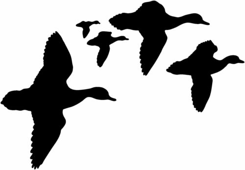 Duck Decals STOB #5 Duck Hunting Boat//Truck Window Stickers