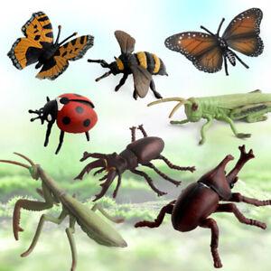 Simulation Tiere Modell Insekt Hirschkäfer Spinne Honigbienen Schmetterling  /%I