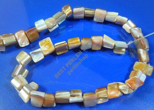 Concha nacar Pepita 10mm perlas moluscos bivalvos blanco joyas perlas 1 Strang Best u32