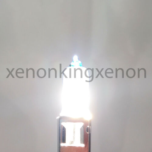Combo 2 Pair H3 100W Bright White Xenon Halogen Headlight #e2 Fog Light 2x Bulb