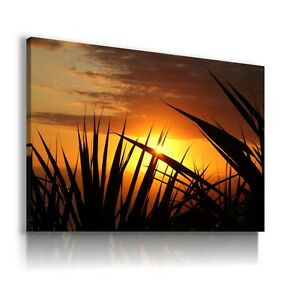 SUNSET-AFRICA-PLANTS-BEACH-AView-Canvas-Wall-Art-Picture-Large-L265-X-MATAGA