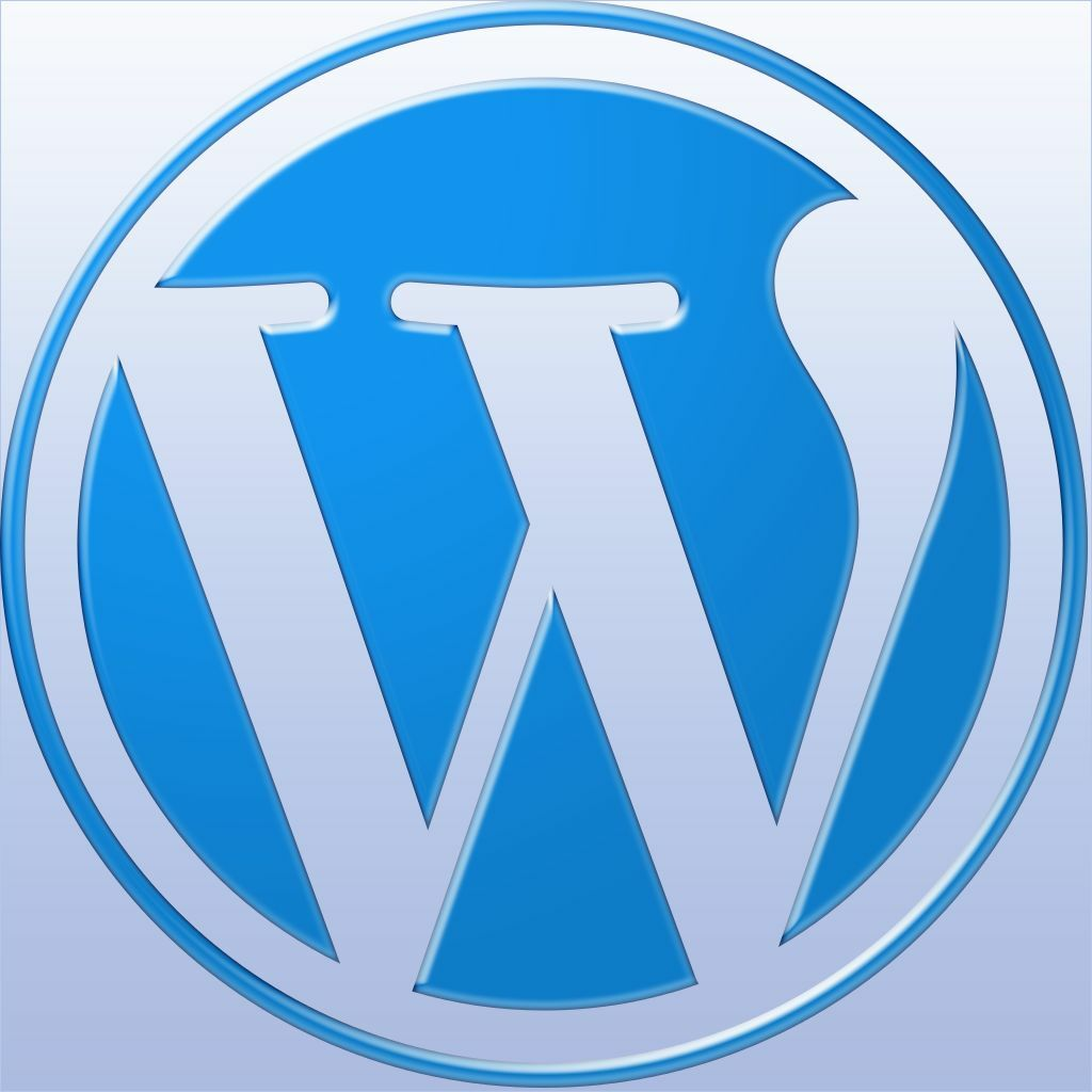 Any Wordpress Blog Website  Theme and plugins  Installed  Free 1 Year Hosting 2