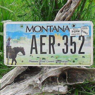 Usa Nummernschild Expressive Authentisch Kennzeichen Von Montana aer352