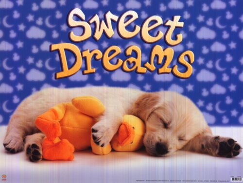 ANIMALIA POSTER~Cute Puppy Dog Sweet Dreams Asleep with Duck Scholastic Print~
