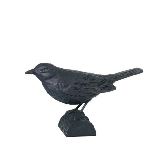 oiseau Wildlife Garden Merle Faitout