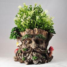 Tree Ent Face Plant Pot Holder Fantasy Garden Outdoor Sculptures Myth 39689
