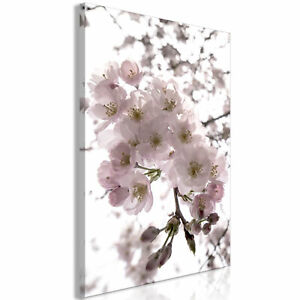 Canvas Print Flowers Framed Wall Art Picure Photo Image b-C-0167-b-m
