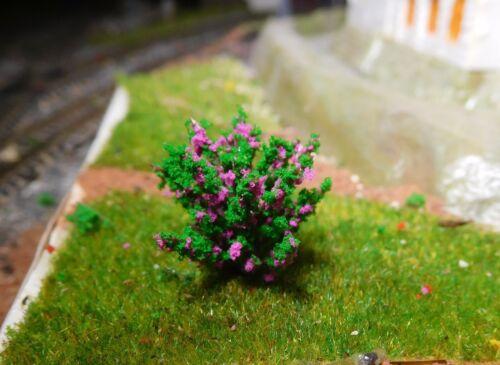 violett Sträucher lila blühend 28 mm hoch 20 dunkelgrüne Büsche