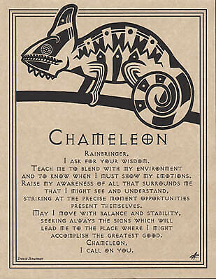 """Chameleon Parchment Poster 8 1//2/"""" x 11/"""" suitable for framing Pagan New Age"""