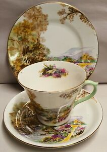 Vintage-Shelley-China-Heather-Pattern-Trio-Pn13419-c1945-66-New-Regent-Shape-Cup