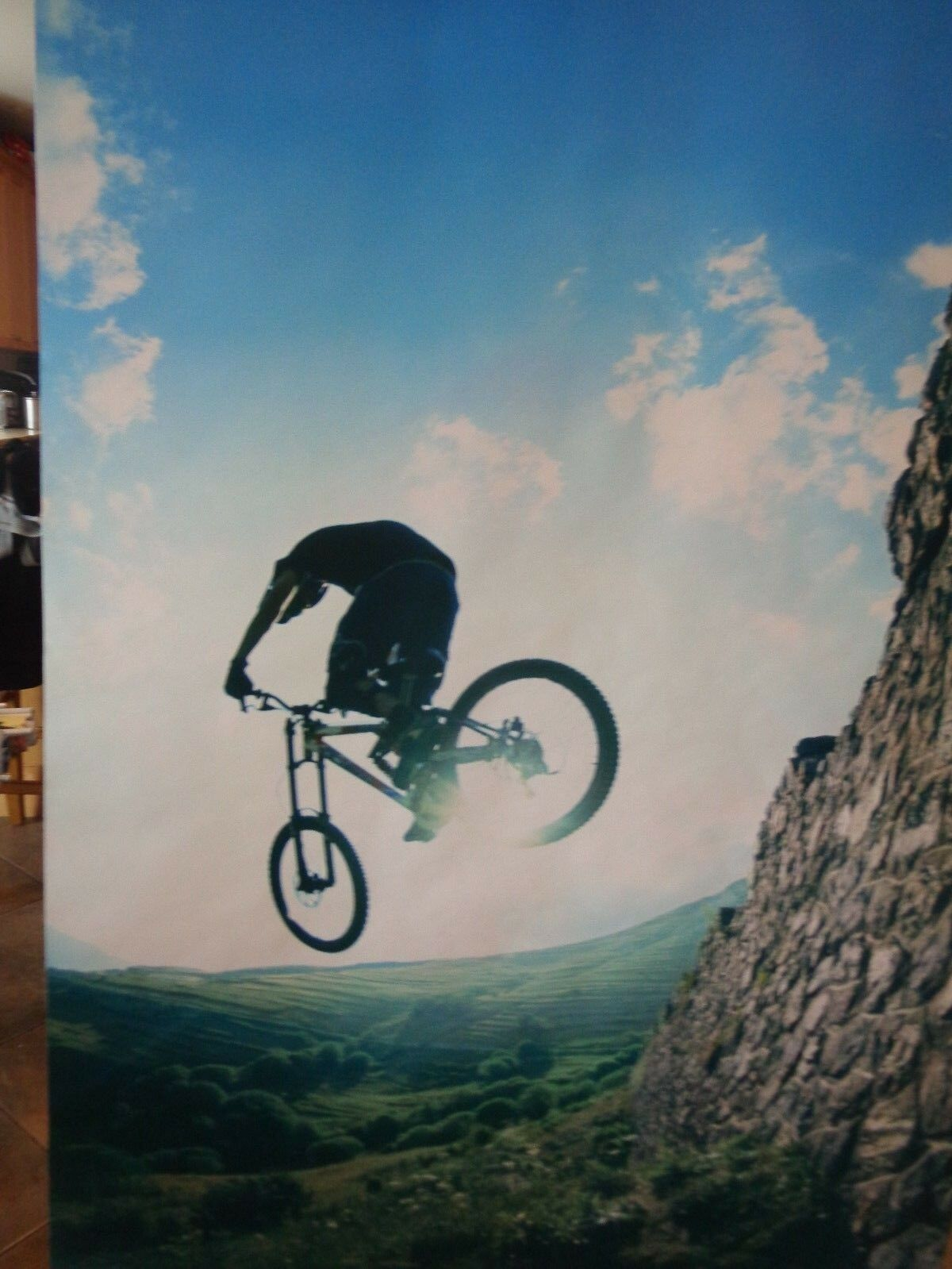 Pottery Barn Teen Extreme Mountain biker  wall  Mural New