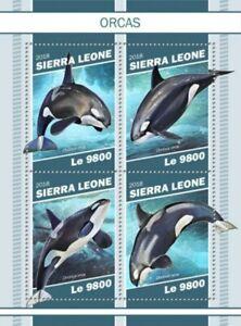 Sierra-Leone-2018-Orques-sur-timbres-4-Timbre-Feuille-SRL181106a