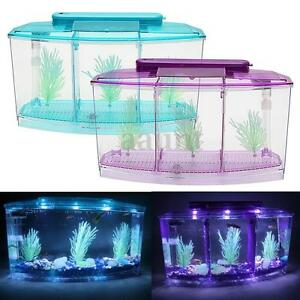 New Triple Cube LED Light Betta Aquarium Separate Spawning Box Fish Tank 0.7Gel | eBay