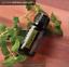 doTERRA-Oregano15ml-Therapeutic-Grade-Essential-Oil-Aromatherapy-Boost-Immune thumbnail 5
