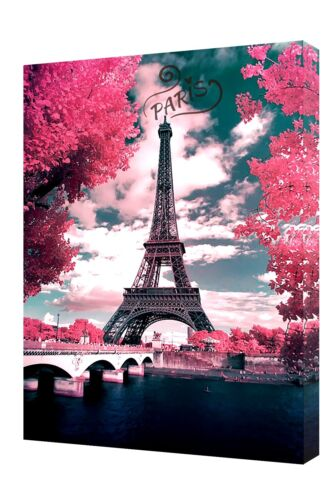 EIFFEL TOWER PARIS WITH PINK TREES PHOTO  PRINT ON WOOD  FRAMED CANVAS WALL ART