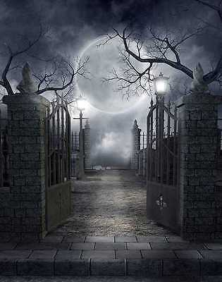 Cemetery terror 5'x7' background Computer-painted (CP) Scenic backdrop DGX-106