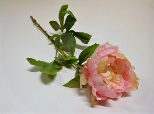 Pfingstrose Rose Seidenblume Kunstblume creme rose rosa 55 cm 42842-37 F9