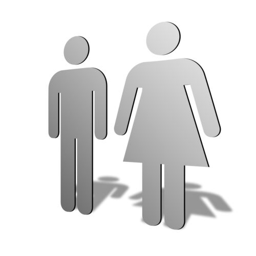 NEW Acrylic His Hers Male Female Gender Symbol Mirrors Sizes 100mm to 1200mm