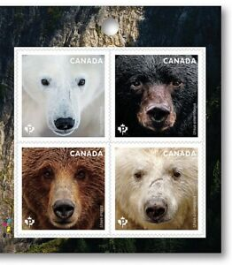 BEARS-Polar-Grizzly-Block-of-4-Right-Booklet-page-Canada-2019-MNH-VF