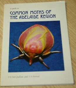 A Guide To Common Moths Of The Adelaide Region By P McQuillan