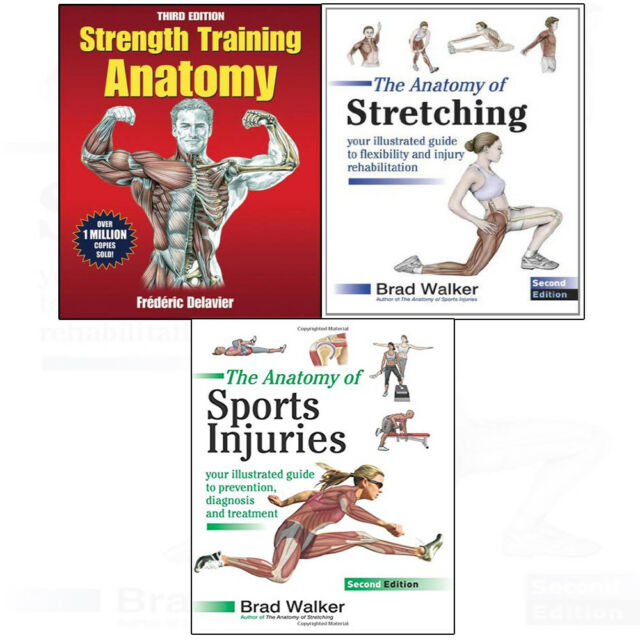 Strength Training Anatomy Stretching Sports Injuries 3 Books