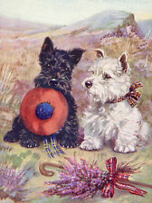 SCOTTISH TERRIER  & WESTIE CHARMING SCOTTIE DOG HOLDS HAT GREETINGS NOTE CARD