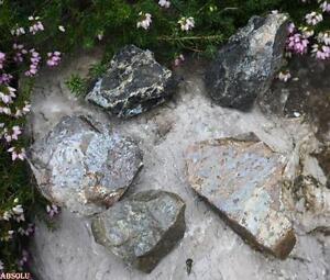 Opale-dans-sa-matrice-Brut-80g-Qualite-A