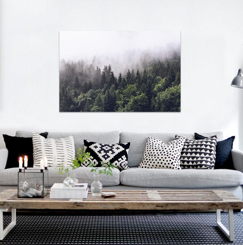 3D Morgen Nebel Kiefer Wald 865 Fototapeten Wandbild BildTapete AJSTORE DE Lemo