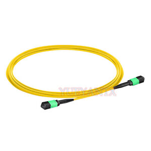 10M-MPO-Female-12-Fibers-Type-A-9-125-Single-Mode-Elite-Trunk-Cable-Patch-Cord