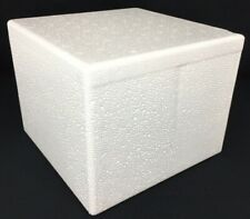 Small Insulated Cold Pack Cold Shipper Box Styrofoam Cooler Medical Camping Euc